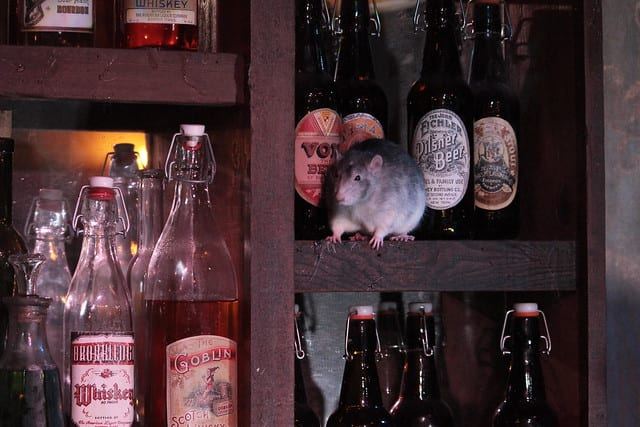 Rat Bar at The San Francisco Dungeon