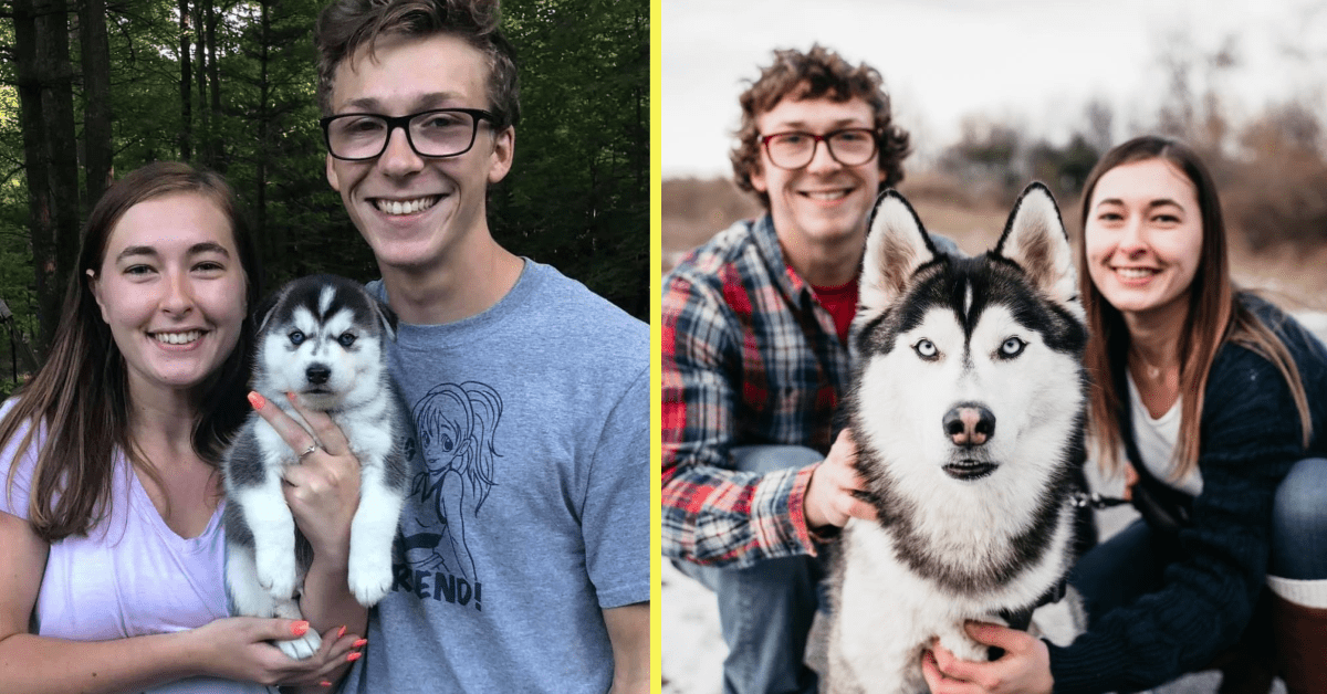 Take a Look at These Wholesome Pet Pics From the 'Then and Now' Challenge