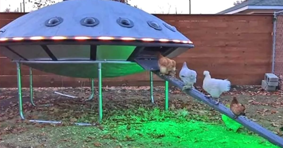This UFO Chicken Coop Raises Arts and Crafts to a New Level