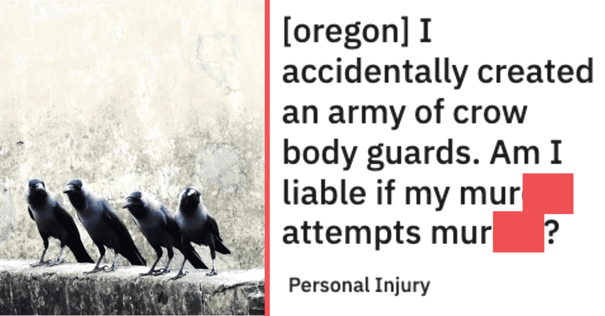 Woman Explains How Befriending a Flock of Crows Could Actually Save Your Life